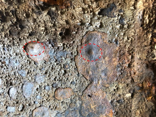 microorganisms influenced corrosion